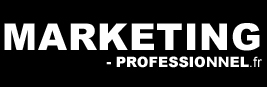 Logo du site marketing-professionnel.fr