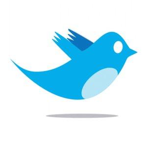 Twitter recherche publicitaire