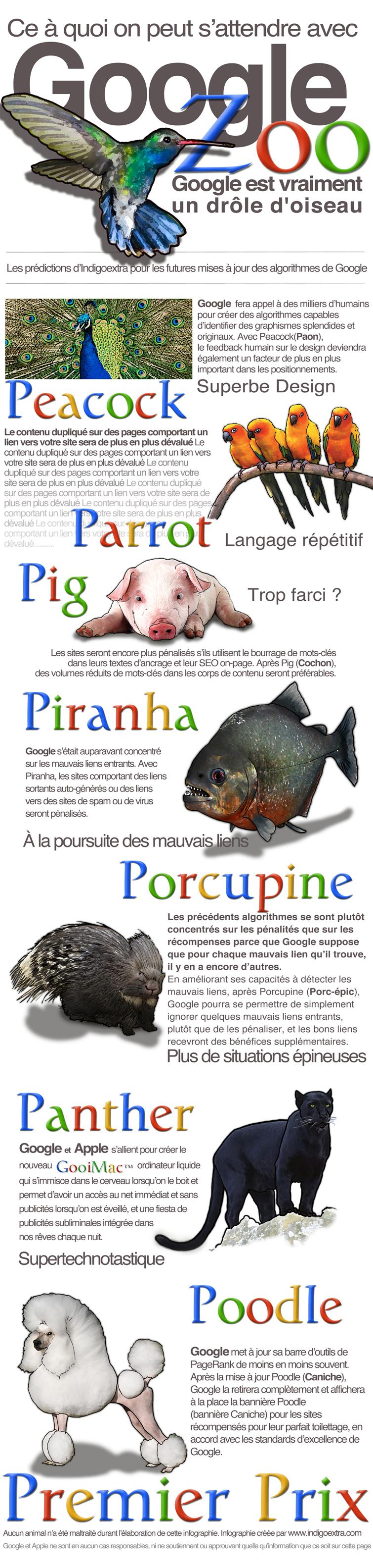 Infographie Google Zoo