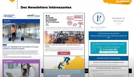 De bons exemples de Newsletters